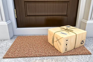Doorstep Delivery Porch Pirate